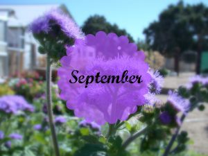 September Photo